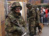 Сухопутные войска Швейцарии