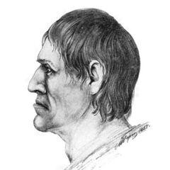 Внешний вид мужчины, похороненного в зрелом возрасте в Незвиске, до ранения.