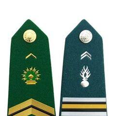 Погон сержанта войск связи (слева) и подполковника жандармерии. Знаки различия китайского производства.