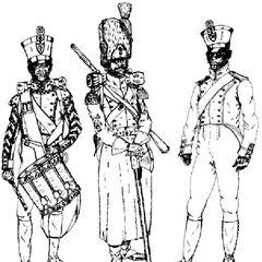 Барабанщик, сапер и фузилер 7-го линейного полка, 1811 - 1814 гг.