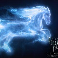 Патронус-лошадь Джинни Уизли.