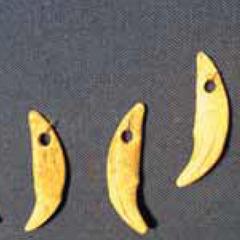 Подвески из зубов лисицы.