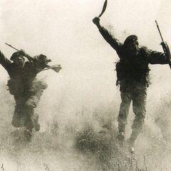 В атаке на Фолклендских островах.