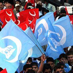 Митинг Серых волков в Турции.