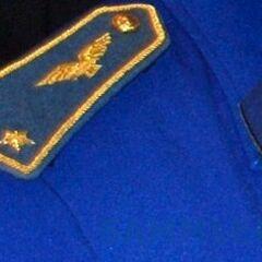 Петлица и погон бригадного генерала ВВС Нигера. Рисунок петлицы одинаковый для всех категорий офицерского состава.