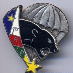 Эмблема парашютного полка (батальона) ЦАР.