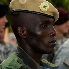Сенегальский парашютист.