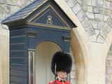 Гренадерский гвардейский полк