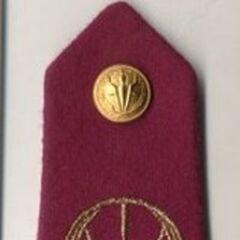 Погон капитана армии Чада. Эмблема армии вышита на погоне, а также помещена на пуговицу.