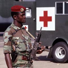 Парашютист Нигера, вооруженный <a href=
