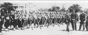 Confederate army 29