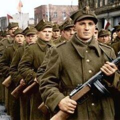 Снимок с парада в Варшаве.