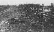 Confederate army 42