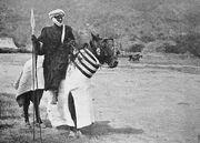 Cavalier arabe du Dékakiré sur un cheval caparaçonné