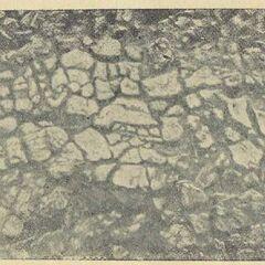 Глиняный плитчатый пол в жилище № 8 на поселении в урочище. Коломыйщина I.