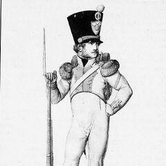 Фурьер вольтижеров 8-го линейного полка, 1814 г.