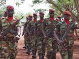 Вооружённые силы ЦАР
