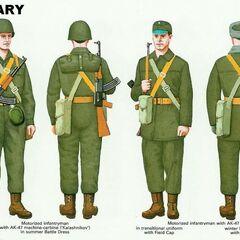 Солдат мотострелкового подразделения в летней униформе, солдат в кепи, солдат в зимней форме.