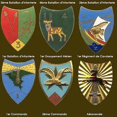 Значки различных формирований ВС Сенегала.