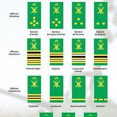 Новые погоны, введенные в 2010-х гг.
