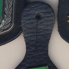 Эмблема со скорпионом и буквами