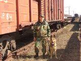 Военизированная охрана украинских железных дорог