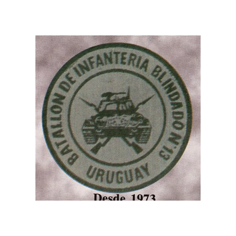 Нарукавная нашивка батальона, 1973 г.