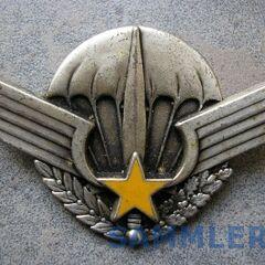 Знак парашютиста ЦАР.