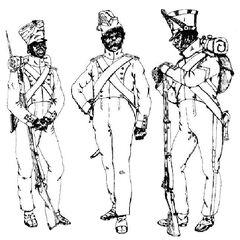 Фузилеры 7-го линейного полка, 1811 - 1814 гг.