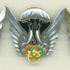 Эмблемы парашютистов.