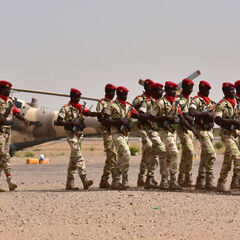 Солдаты национальной гвардии. Их эмблемы уже имеют нормальный размер.