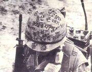 Vietnam-kr-1