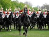 Лейб-гвардейский конный полк