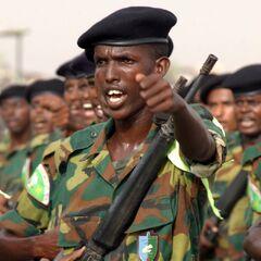 Рядовой джибутийской армии в полевой форме. На левом нагрудном кармане — эмблема Национальной службы адаптации.