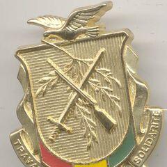 Современная эмблема сухопутных войск Гвинеи. Такие же эмблемы, но меньше размером, носят на беретах и фуражках.