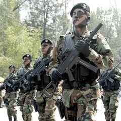 Солдаты морской пехоты Мексики с UMP.