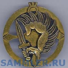 Эмблема парашютистов Нигера: крылатая рука с мечом является общеизвестным символом французских парашютистов, а агадесский крест или крест туарегов, на фоне которого расположена французская эмблема, знаменует собой ВС Нигера