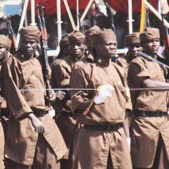 Национальная гвардия племен Чада.