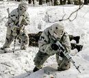 Силы специальных операций Российской Федерации