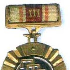 Орден Вахтанга Горгасали III степени, которым было награждено 23 стрелков и командиров УНСО.