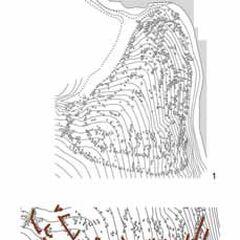 План поселения Ятрановка (1) и его укреплений со стороны поля (2).