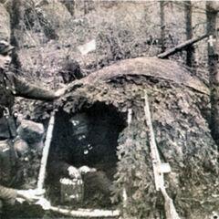 Санитарная палатка УПА в лесу.