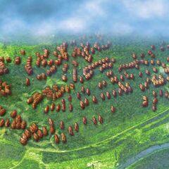 План-реконструкция трипольского поселения Ямполь.