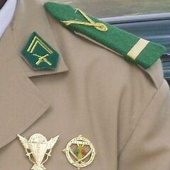 Петлицы и погоны офицера Малийской армии. Для всех военнослужащих сухопутных войск, установлены погоны и петлицы зеленого цвета. Нашивка из тесьмы в форме буквы