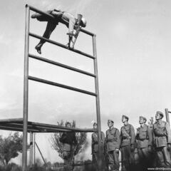 Солдаты ЮНА на занятиях по физической подготовке.