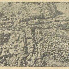 Остатки поперечной перегородки и основания печи с вальковой глиняной обмазкой в жилье № 10, Коломыйщина.