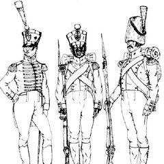 Музыкант, вольтижер и гренадер 7-го линейного полка, 1811 - 1814 гг.