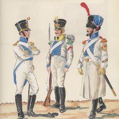 1-й линейный полк, 1813 - 1815 гг. Слева-направо: лейтенант фузилеров, вольтижер,  сержант саперов.