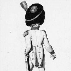 Офицер гренадеров 2-го линейного полка, 1814 г.