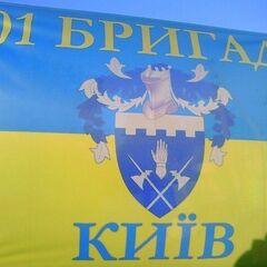 Флаг 101-й бригады, использовавшийся бойцами части в зоне проведения АТО, 2014 г.
